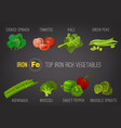 Iron-rich foods poster vector image