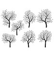 abstract silhouettes of spring trees with leaves vector image vector image