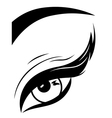 Eye with fluffy eyelid close-up vector image vector image