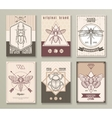 Insects Hipster Cards Set vector image vector image