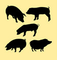 pig animal silhouettes vector image vector image