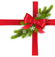 red bow with fir branch vector image vector image