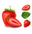 set of strawberry berries vector image vector image