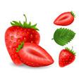 set strawberry berries vector image