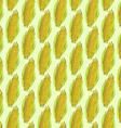 Sketch corn cob in vintage style vector image vector image