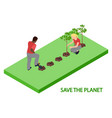 volunteers plant trees 3d isometric vector image