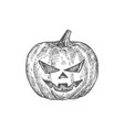 hand drawn halloween scary pumpkin vector image vector image