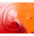 Macro feathers White orange red vector image vector image