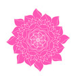 pink peony flower concept logo ethnic plant rose vector image vector image