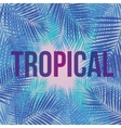 Text Tropical on a background of palm leaves vector image