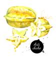Watercolor hand drawn fresh Yellow fruit carambola vector image vector image