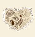 with heart seashells vector image