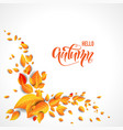 beautiful fall leaves vector image vector image