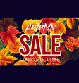 design of autumn sale poster vector image vector image