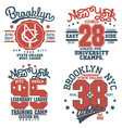 new york t-shirt graphics typography emblem set vector image