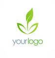 seed organic leaf logo vector image