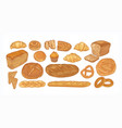 set of breads and baked products of various types vector image vector image