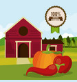 colorful poster of organic best food with farm vector image vector image