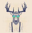 cool deer vector image vector image