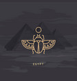 drawing icon egyptian scarab beetle vector image