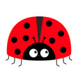 lady bug ladybird insect icon print love greeting vector image