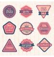 Vintage sale labels and badges set vector image