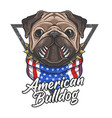 american bulldog flag bandana cute animal vector image