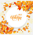 beautiful fall leaves frame vector image vector image