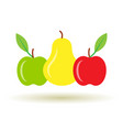 colorful pear and apple icon with shadow vector image