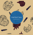 dried herbal thai tea seamless pattern vector image vector image