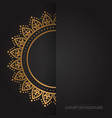 gold vintage greeting card on a black background vector image