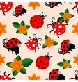 Seamless pattern with ladybugs and flowers vector image vector image