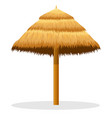 beach straw umbrella vector image