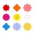 set of colorful spring flowers vector image