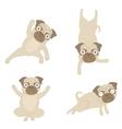 Yoga pugs vector image