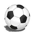 soccer-ball vector image vector image
