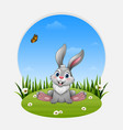 cartoon funny rabbit sitting on the grass vector image