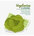 lettuce fresh natural vegetarian cuisine vector image vector image