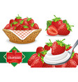 set of different fresh strawberry groups vector image vector image