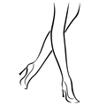 Slender female feet in shoes vector image vector image