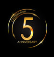 template 5 years anniversary vector image vector image