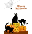 webs black cat and pumpkins vector image vector image
