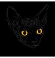 cat breed sphinx vector image
