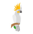 cockatoo bird icon vector image vector image