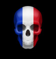 french flag skull vector image vector image