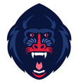 mandrill monkey head vector image vector image