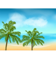 summer sea and palm tree background landscape vector image vector image