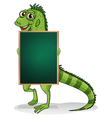 A greenboard with an iguana at the back vector image vector image