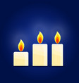 burning candles set vector image
