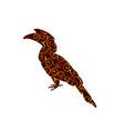 hornbill bird spiral pattern color silhouette vector image vector image